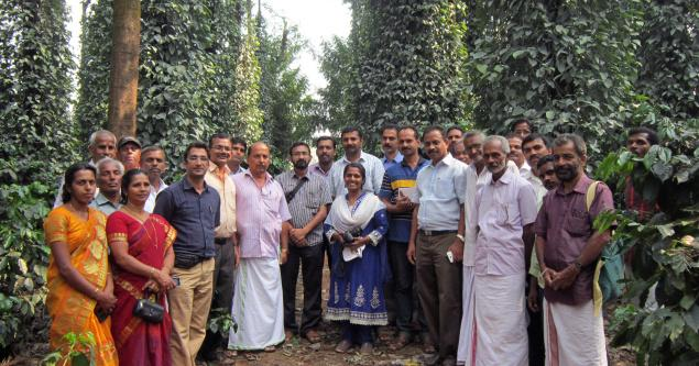 Pepper farmers from Wayanad visiting a pepper farm in Coorg.