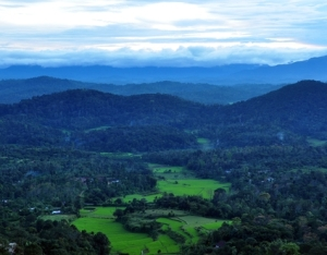 The picturesque scenery of Coorg