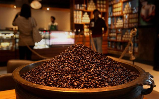 Single-origin Indian coffee will be available for the first time in Starbucks, Seattle, as a limited edition Photo: PTI