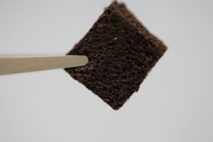This coffee-infused bioelastic foam can filter lead from water. Photo by Chavan et al., ACS Sustainable Chem. Eng., 2016