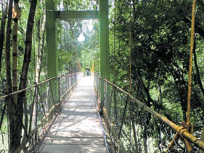 The Hanging Bridge at Nisargadham.