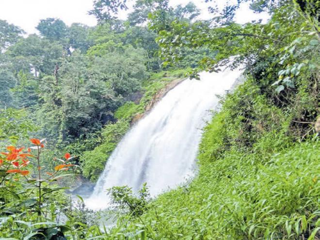 A view of Chelavara Falls in Kodagu.