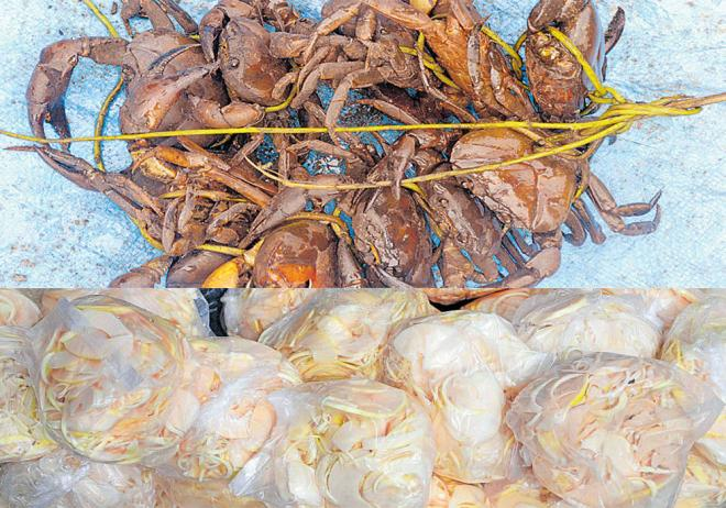 Crabs being sold near Madikeri KSRTC bus stand and Bamboo shoots laid out for sale. DH Photos